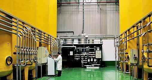 Instalación fotovoltaica de autoconsumo para una envasadora de aceite